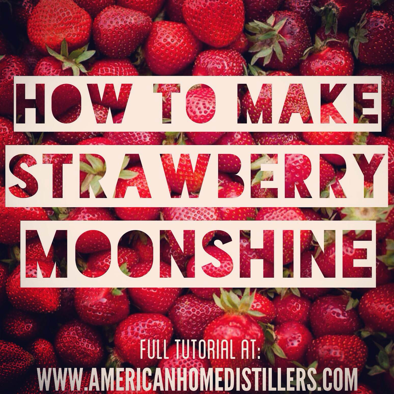 How to Make Strawberry Moonshine | American Home ...